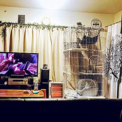リビング/ケージ/猫/レトロ/一人暮らし...などのインテリア実例 - 2018-01-15 14:28:56