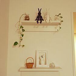 棚/うさぎ/ぽれぽれ /無印良品 壁に付けられる家具のインテリア実例 - 2015-08-17 15:15:37