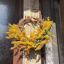花のある暮らし/ミモザのリース/玄関/入り口のインテリア実例 - 2020-03-13 13:41:56
