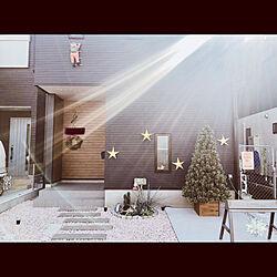 クリスマス/enjoyyourself/住宅情報館/シェリノ/10坪ハウス...などのインテリア実例 - 2020-12-11 21:59:57