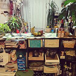 キッチン/スッキリ化計画/キッチンカウンター収納/子供がいる家/観葉植物のインテリア実例 - 2016-11-25 20:15:32