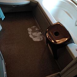 バス/トイレ/月1ジャバ/排水口ハイター/洗濯機掃除/スポンジ交換のインテリア実例 - 2020-09-15 15:20:56