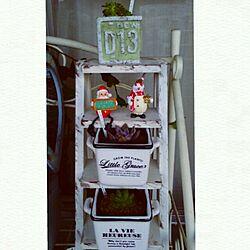 玄関/入り口/クリスマス/Christmas雑貨/ベランダガーデン/花のある暮らし...などのインテリア実例 - 2016-12-08 18:11:28