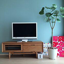 リビング/観葉植物/北欧/マリメッコ/アクセントクロスのインテリア実例 - 2014-07-22 16:47:07