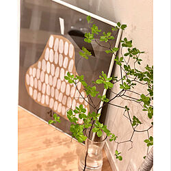 壁/天井/ドウダンツヅシ/吹抜けのあるリビング/洋梨のポスター/観葉植物...などのインテリア実例 - 2018-05-29 21:30:06