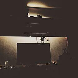 壁/天井/間接照明/ブライワックス/多肉植物/100均...などのインテリア実例 - 2016-10-06 20:24:01