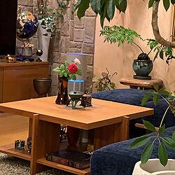 植物と暮らす/自宅好き/癒し/薔薇/部屋全体のインテリア実例 - 2021-08-02 18:39:51