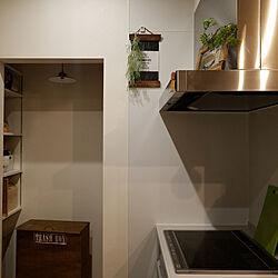 キッチン/三菱IHクッキングヒーター/Takara standard 換気扇/パントリー/ゴミ箱DIYのインテリア実例 - 2017-12-04 20:53:58