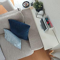 棚/ゲーム機収納/IKEA/Switch収納/ジョイコン...などのインテリア実例 - 2020-08-21 14:43:14