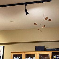 壁/天井/モビールのインテリア実例 - 2021-01-08 17:02:09