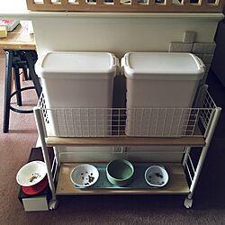 リビング/フードストッカー/猫の水飲み場/猫の食事処/IKEA...などのインテリア実例 - 2016-10-23 23:56:52