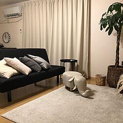 IKEAクッション/IKEAラグ/IKEAのソファー/サイドテーブル/パキラ...などのインテリア実例 - 2020-07-31 21:46:47