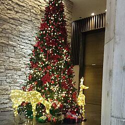 玄関/入り口/マンションのロビー/クリスマスツリーのインテリア実例 - 2014-12-13 02:02:50