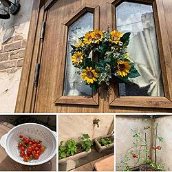 木製風玄関ドア/ひまわりのリース/リース/玄関ドア/剪定...などのインテリア実例 - 2021-06-18 15:05:30