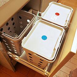 引き出し収納/IKEAゴミ箱/キッチンのゴミ箱/キッチンのインテリア実例 - 2020-11-04 23:30:01