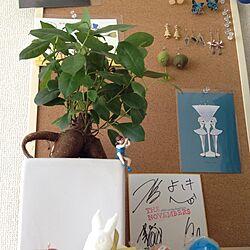 リビング/植物/IKEA/雑貨/フチ子のインテリア実例 - 2013-09-09 14:30:43