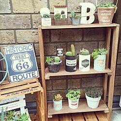 玄関/入り口/ベランダガーデン/寄せ植え/セダム/多肉植物...などのインテリア実例 - 2015-06-29 07:40:18