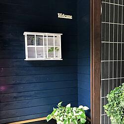 DIY/観葉植物/リノベーション/玄関/入り口のインテリア実例 - 2021-07-01 13:29:42