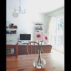 リビング/空き瓶/花/いいちこフラスコボトル/花瓶...などのインテリア実例 - 2014-02-09 08:12:40