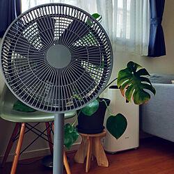 リビング/扇風機・サーキュレーターのインテリア実例 - 2021-07-03 21:26:30