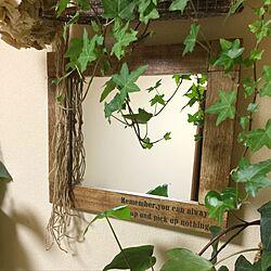 壁/天井/jardinet/お花と多肉の混在/観葉植物/DIY棚...などのインテリア実例 - 2017-03-26 19:04:54