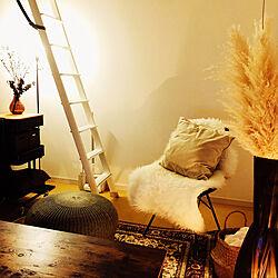 リビング/照明/IKEA/椅子/観葉植物...などのインテリア実例 - 2018-11-21 21:07:19