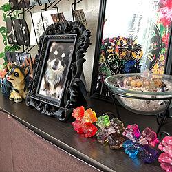 部屋全体/オルゴナイト/パワーストーン/溺愛犬チョコちゃんです/虹の橋へ...などのインテリア実例 - 2019-02-22 10:22:40
