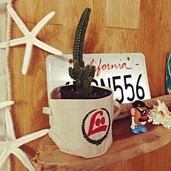 棚/桜/植物/飾り棚/DIY...などのインテリア実例 - 2015-01-24 23:50:35