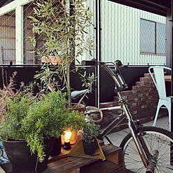 玄関/入り口/NO GREEN NO LIFE/パレット/自転車/booms...などのインテリア実例 - 2016-07-19 02:47:01
