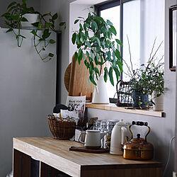 観葉植物/植物/園芸/植物のある暮らし/かご収納...などのインテリア実例 - 2020-06-02 20:12:14