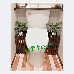 DIY/観葉植物/バス/トイレのインテリア実例 - 2021-05-16 07:28:52