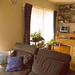 部屋全体/IKEA/折りたたみダイニングテーブル/無印のソファ/グリーン...などのインテリア実例 - 2017-03-20 09:07:28