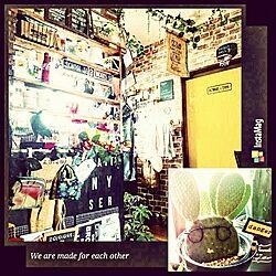 キッチン/雑貨/DIY/セリア/フェイクグリーン...などのインテリア実例 - 2015-08-03 18:53:45