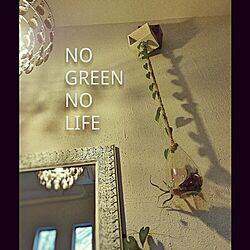 壁/天井/NO GREEN NO LIFE/照明/植物/green...などのインテリア実例 - 2016-07-31 20:51:13
