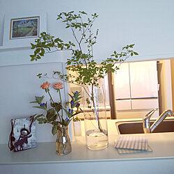 花びん/ドウダンツツジ/ドウダンツツジのある暮らし/花のある生活/花のある暮らし...などのインテリア実例 - 2021-07-02 17:47:52
