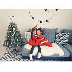 部屋全体/ムートンラグ/クリスマスツリー/クリスマス/カウチソファー...などのインテリア実例 - 2016-12-22 09:32:24