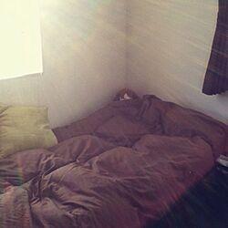 ベッド周り/ベッド/ブラウンのインテリア実例 - 2012-06-03 18:00:55