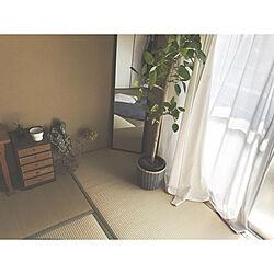 観葉植物/ナチュラル/IKEA/ユーカリ/市営住宅...などのインテリア実例 - 2019-03-16 22:35:50