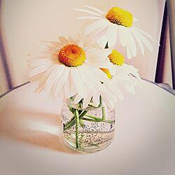 リビング/ちび/プレゼント♥︎/花/植物のインテリア実例 - 2015-05-02 18:07:23
