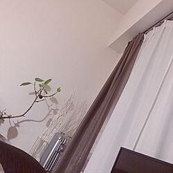 キャンドゥ/シンプル/ひとり暮らし 1K/観葉植物/ダイソー...などのインテリア実例 - 2019-10-26 13:24:25