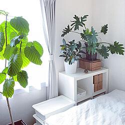 ウンベラータ日光浴中/観葉植物/IKEAの棚/ベッド周りのインテリア実例 - 2021-08-02 21:32:46