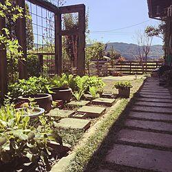 玄関/入り口/5月/草むしり/新緑/こどもと暮らす。...などのインテリア実例 - 2017-05-02 19:57:54