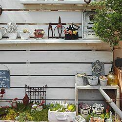 玄関/入り口/古いもの/朝の1枚/グリーンのある暮らし/雑貨...などのインテリア実例 - 2017-04-03 09:16:30