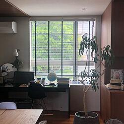 ブラインド 木製/部屋全体/LouisPoulsen/コンランショップのインテリア実例 - 2020-11-08 16:35:26