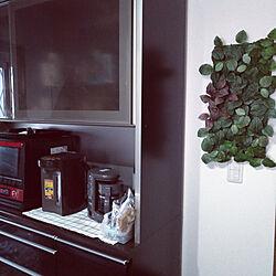 キッチン/IKEAのインテリア実例 - 2020-05-29 06:24:06