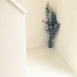壁/天井/大きい花瓶が欲しい/花瓶はアクタス/ユーカリフェイク/階段の下...などのインテリア実例 - 2018-11-10 17:02:25