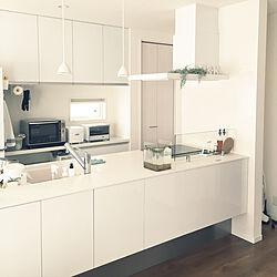 キッチン/めだか水槽/IKEA/ニトリ/フランフラン...などのインテリア実例 - 2017-10-03 08:46:17