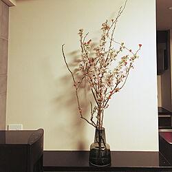リビング/ホルムガード フローラ/フレシャス スラット/花のある暮らしのインテリア実例 - 2018-02-14 20:42:35