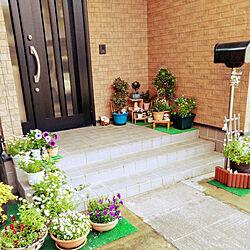 お花/花のある暮らし/花/コンクリートの庭/ガーデニング...などのインテリア実例 - 2019-05-02 07:17:18