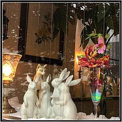 エジプトの猫/うさぎさん/初夏の庭/灯りのある暮らし/心地良い暮らし...などのインテリア実例 - 2020-07-06 14:58:50